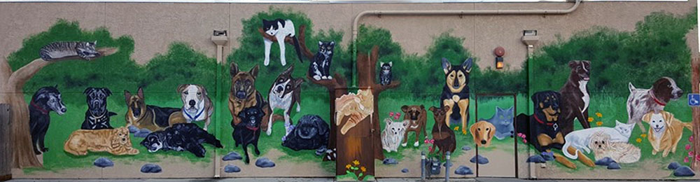'Our Pets/Our Family' mural Rio Linda Veterinary Clinic