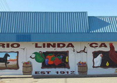 Rio Linda California community pride mural